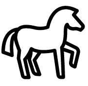 Psychotherapie mit dem Pferd